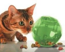 Cat Food Ball SlimCat – Full Review