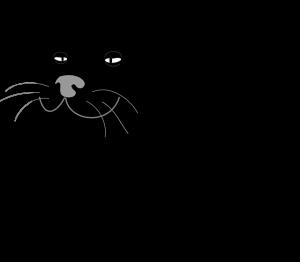 cat-48506_640