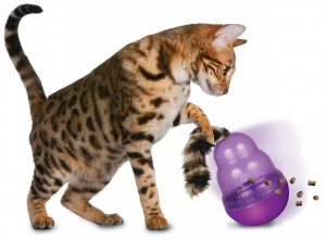 Cat and Kong Wobbler