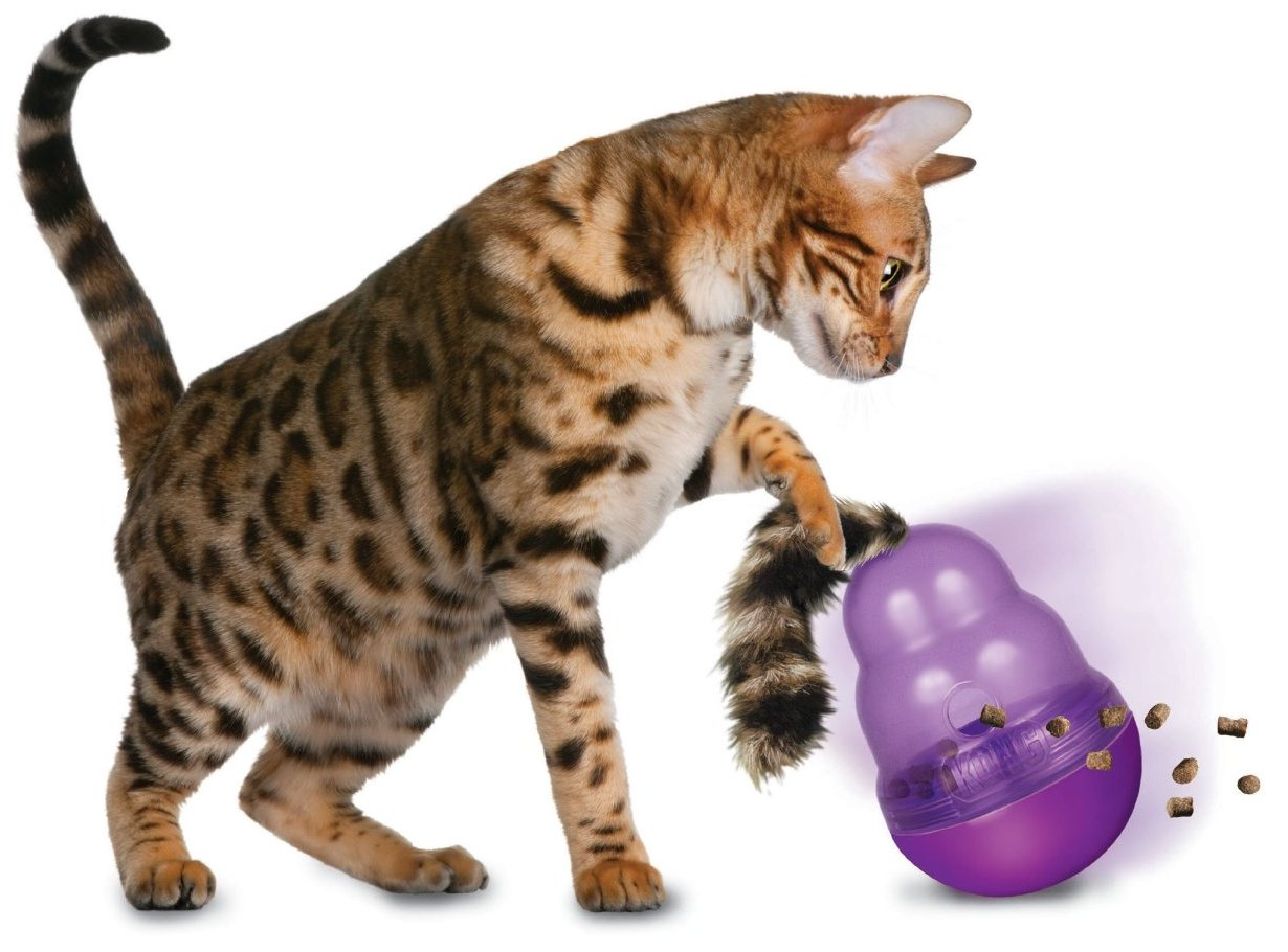 Cat Tail Toy
