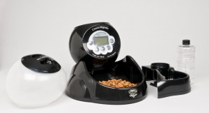 Crown Majestic Automatic Pet Feeder