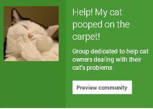 cat communitypooping