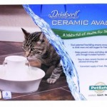 Petsafe Drinkwell Sedona Pet Fountain Review