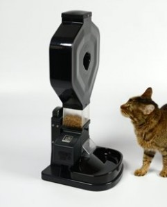Benefits Of Using An Automatic Pet Feeder For Your Cat