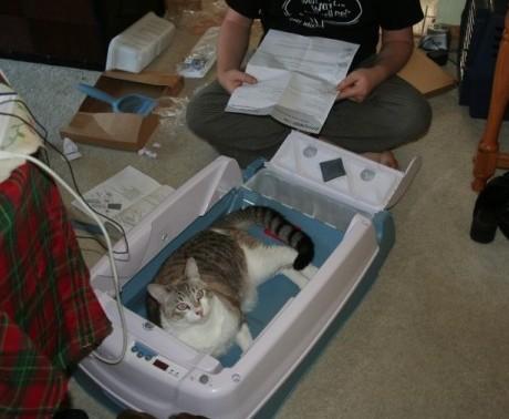 ewen roberts photo arena kitty litter box