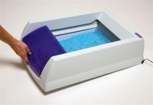 Removable waste trap cover