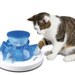 Triple Play 3-Way Cat Tunnel Review
