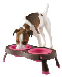 Popware for Pets Collapsible Pet Feeder Pink