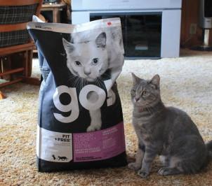 My cat loves Petcurean Go!