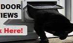 How Do Automatic Cat Doors Work?