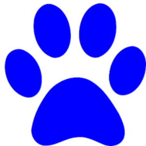 cropped-favicon-cat-paw.png