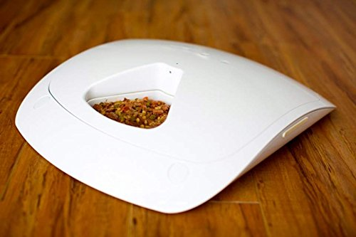 Feed And Go Automatic Pet Feeder Review Is It Worth The