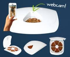 The feeder with a webcam