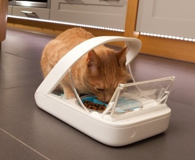 Cat eating from SureFreed Microchip pet feeder