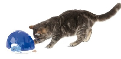 Cat playing with Trixie Snack Box