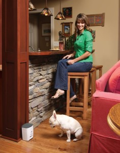 PetSafe Train 'N Praise blends with any decor