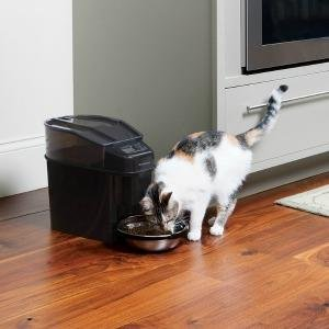 Cat eating from Petsafe Healthy Pet Simply Feed
