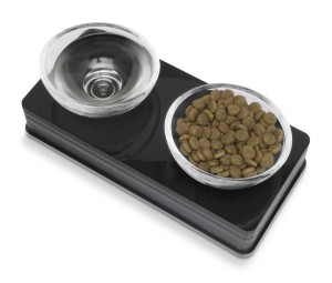 Catit Style 2-Bowl Glass Diner Set for Pets – Full Review