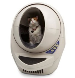 Litter Robot Open Air with Cat inside