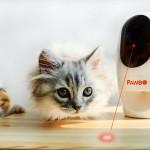 Pawbo Wi-Fi Pet Camera & Treat Dispenser Review