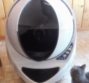 The Litter Robot Open Air is sturdy and very solid