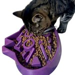 Slow Feed Cat Bowl Review