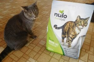 Nulo Freestyle Chicken & Cod Cat Food Review