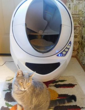 Sophie and the Litter Robot Open Air