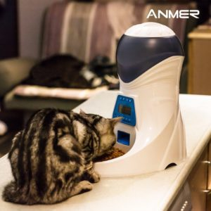 Cat eating from Anmer A25 pet feeder