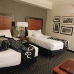 La Quinta Cat Friendly Hotel Review