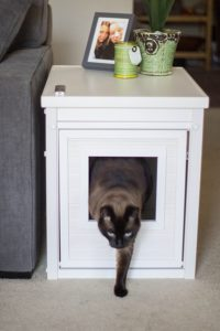 EcoFlex Litter Loo Litter Box Cover/End Table Review